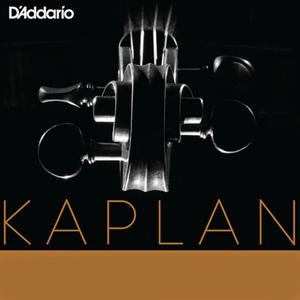 Kaplan cropped