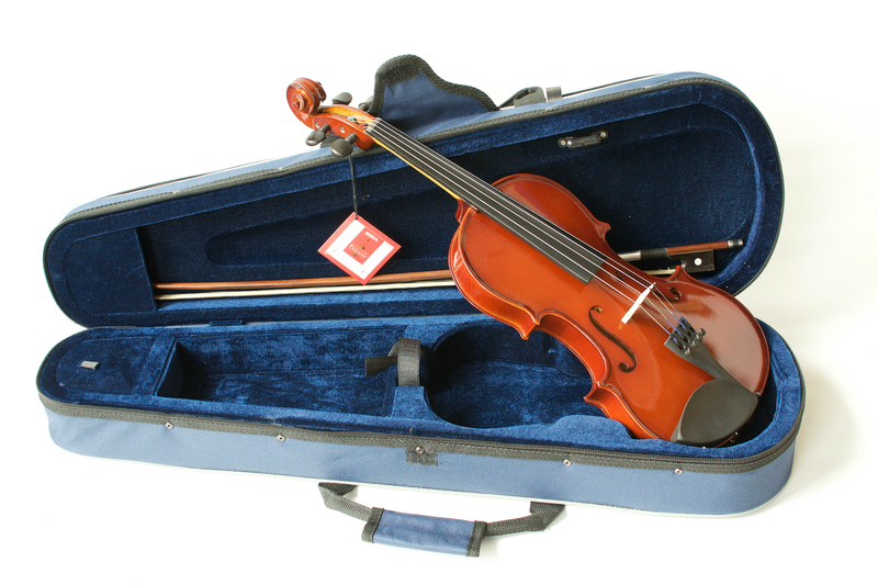 Image of The Primavera 100 Student Violin Outfit with Prelude Strings