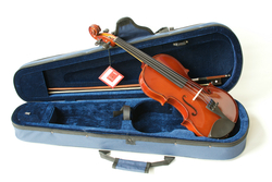 The Primavera 100 Student Violin Outfit with Prelude Strings